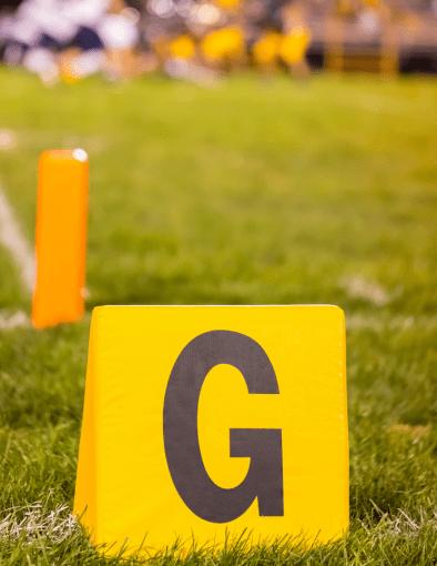 Carolina Panthers 2020 Team Study